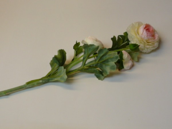 Seidenblume Ranunkel cremefarben 62cm lang