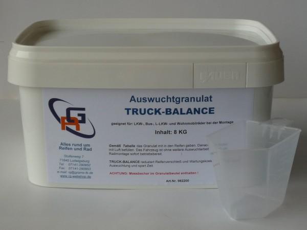 Auswuchtgranulat RG TRUCK-BALANCE 8 KG